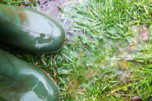 laarsen in het natte gras